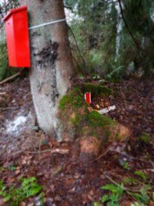 Tomtens brevlåda för önskelistor i skogen.